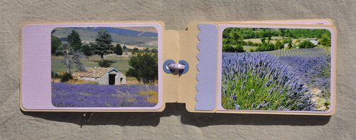 Provence 0270