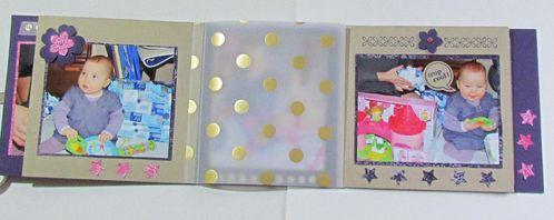 minis-albums-2904.JPG