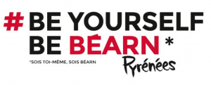 PL-BEARN-4-300x121.png