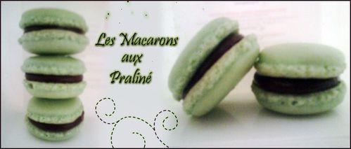 montage macarons praliné -copie-1