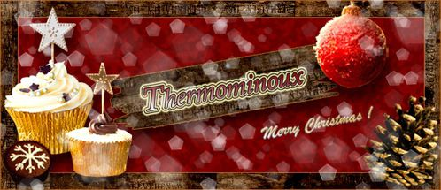 THERMOMINOUX-NOEL