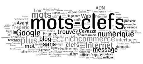 mots clefs 2011