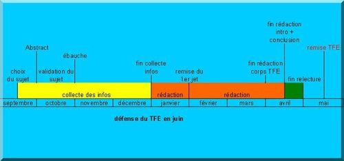 TFE02