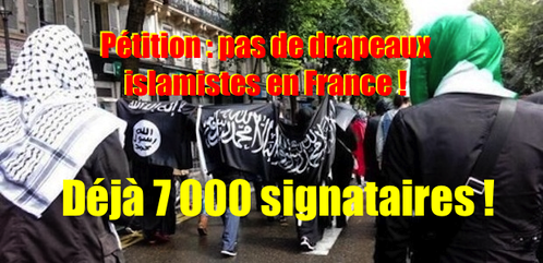 Petition-contre-les-emblemes-islamistes-en-France--7-000-.png