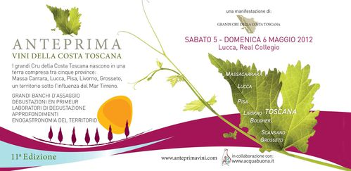 evento vini costa toscana