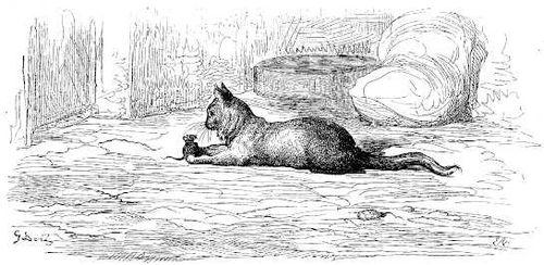 Le-vieux-chat-et-la-jeune-souris_Gustave-Dore.jpg