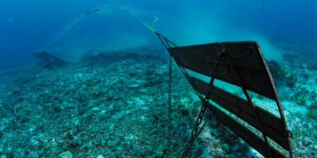 1559_1560_bottom-trawling_1_460x230.png
