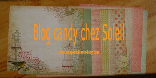 blog-candy 1676 (500x250) copie