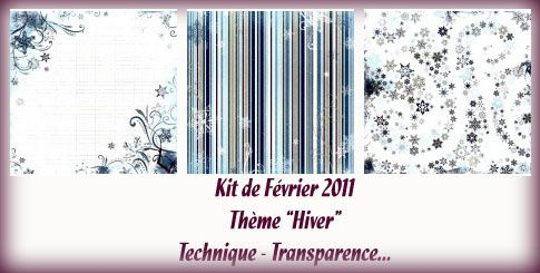 Kit-Fevrier-2011---Bo-Bunny---Midnight-Frost.jpg
