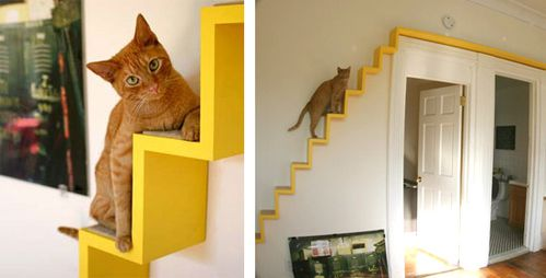 amenagement interieur chat
