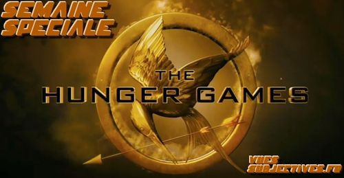 Hunger Games Banner VS 03