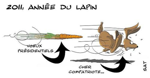Voeux-lapin.jpg