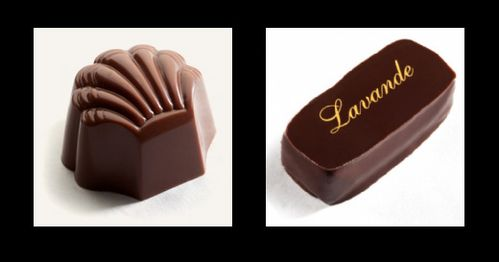 The chocolate line anvers lot088