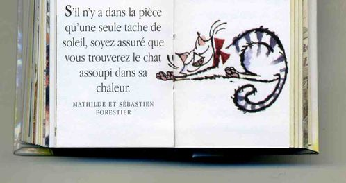 Chat frileux