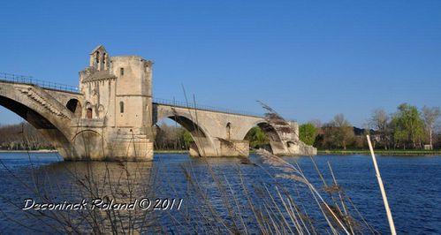 avignon pont panorama 1