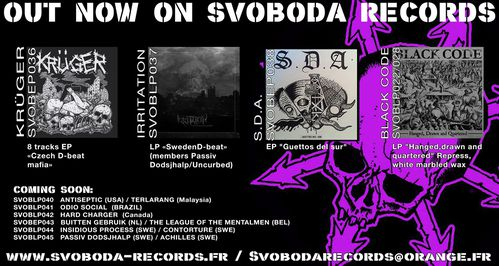 SVOBODA FLYER PURPLE 2014