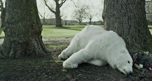 Greenpeace-Homeless-Polar-Bear-London-Campaign-alone.jpg