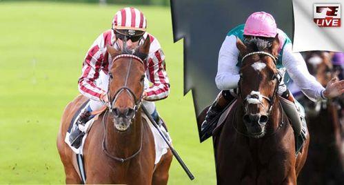 Champion-Stakes-Cirrus-des-Aigles-VS-Frankel.jpg