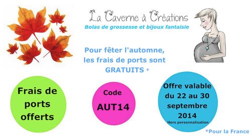 code-promo-automne-la-caverne-a-creations-bola-frais-de-por.png