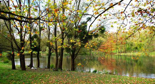 IMGP6541-La-Haute-vallee-de-la-Bievre-r.jpg