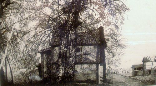 Dessin J. Estel, L'alliance de l'Arbre et de la Petite Maison,Collection Emmaüs