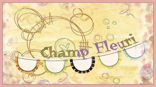 fanion champflcom