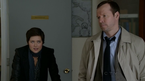 blue-bloods-megan-boone.png