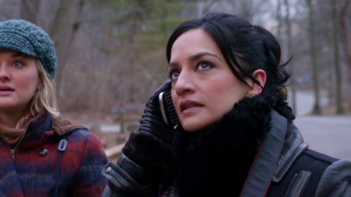 the-good-wife-archie-panjabi-kalinda-lesbian.png