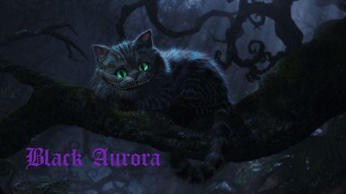 Black Aurora Logo