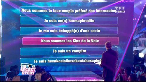 TF1-2010-07-09_214001.jpg