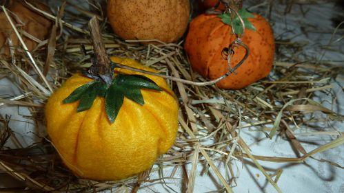 citrouilles-halloween-230.JPG