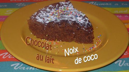 Moelleux choco-coco3