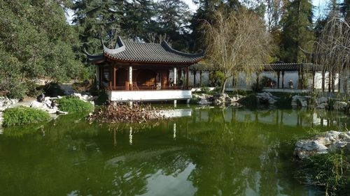 Huntington Library & Gardens, CA - 136