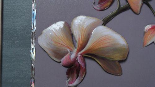 Les orchidées de Nat 3