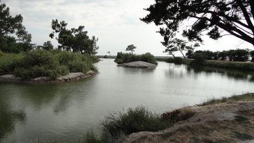 Bassin-d-Arcachon1.JPG