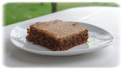Brownie-aux-noisettes.jpg