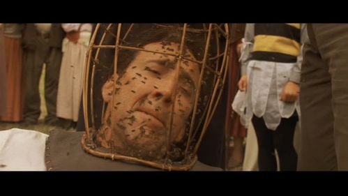 bees-cage.jpg