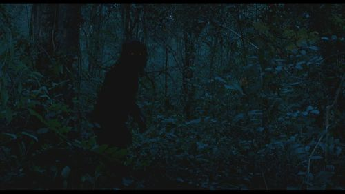 boonmee 3