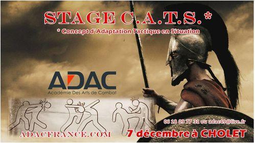 CATS-Sparta2.jpg