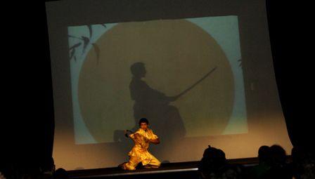 17 mars 2012 CINEMA FESTVAL ARTS MARTIAUX 5