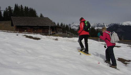 2011-03-31 Alpage des Têtes 03