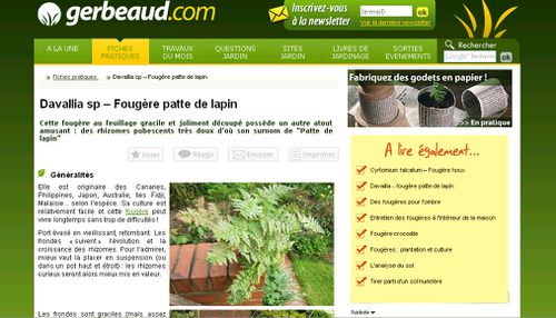 gerbeaud fiche fougere