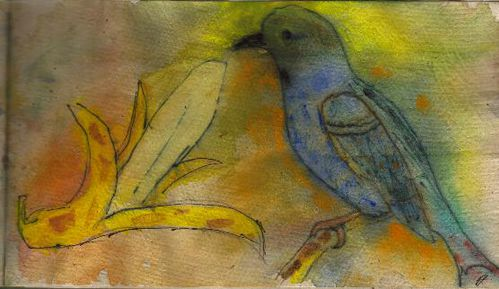 L-oiseau-bleu-2.jpg
