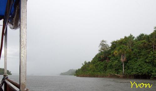 Guyane-184