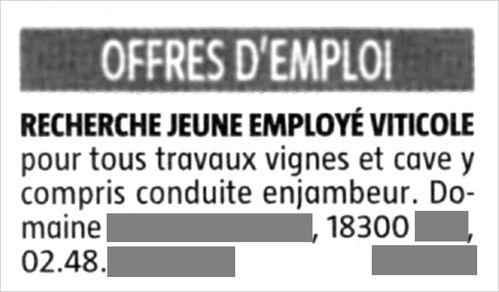 offre emploi 2010 11 04-copie-1