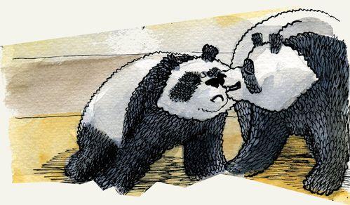 Panda_Test_004.jpg