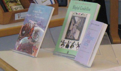 couvertures-livres-ch-r.JPG