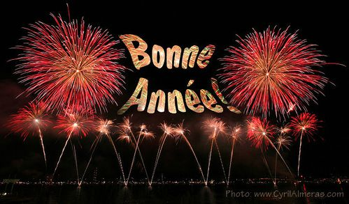 carte-bonne-annee-feux-artifice.jpg