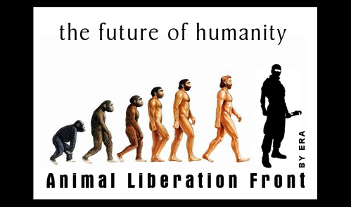 Evolution de l'humanite 2