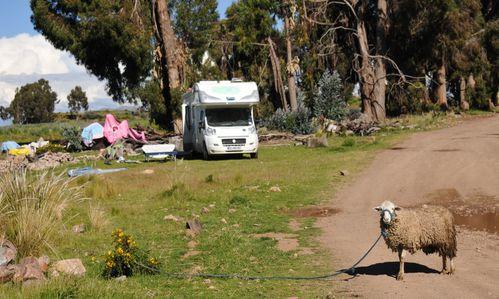 Lac-Titicaca-mars-2013 6026